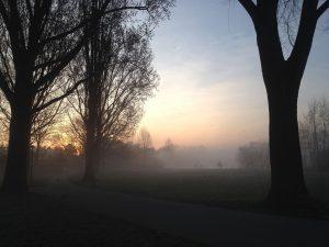 Weg im Morgennebel